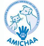 Logo de Amichaa Asociación Civil