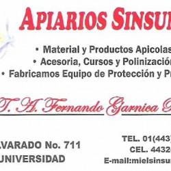 Apiario Sinsuni img-0