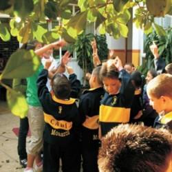 Cadi Monarca. Preescolar y Primaria img-28