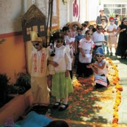 Cadi Monarca. Preescolar y Primaria img-31