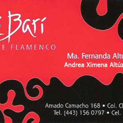 Cale Bari Arte Flamenco img-0
