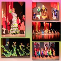 Centro de Arte Flamenco Arias img-5