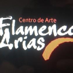 Centro de Arte Flamenco Arias img-30