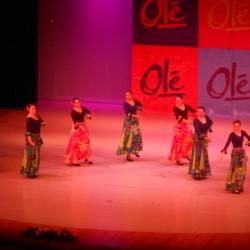 Centro de Arte Flamenco Arias img-9
