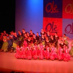 Centro de Arte Flamenco Arias img-6