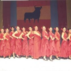 Centro de Arte Flamenco Arias img-12