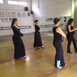 Centro de Arte Flamenco Arias img-23