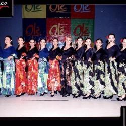 Centro de Arte Flamenco Arias img-10