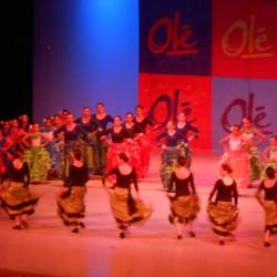 Centro de Arte Flamenco Arias img-7