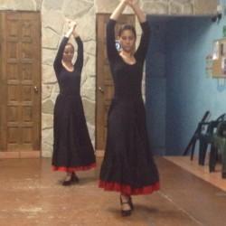 Centro de Arte Flamenco Arias img-21