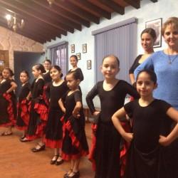 Centro de Arte Flamenco Arias img-18