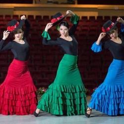 Centro de Arte Flamenco Arias img-25