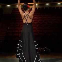 Centro de Arte Flamenco Arias img-29