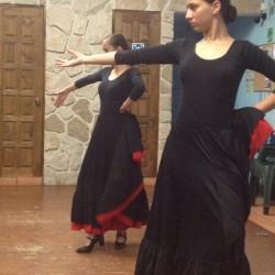 Centro de Arte Flamenco Arias img-20