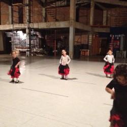 Centro de Arte Flamenco Arias img-15