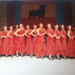 Centro de Arte Flamenco Arias img-11