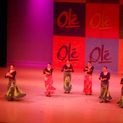 Centro de Arte Flamenco Arias img-8