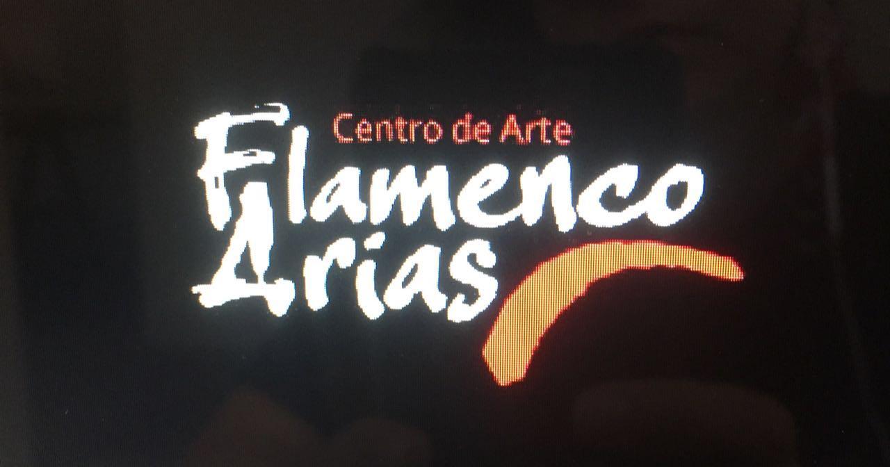 CentrodeArteFlamencoArias