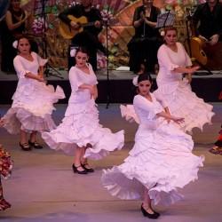 Centro de Arte Flamenco Arias img-26