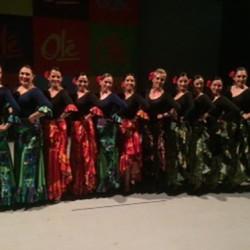 Centro de Arte Flamenco Arias img-2