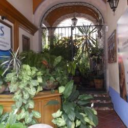 Centro Médico Geriátrico y Gerontológico Santa Sofía img-6