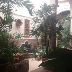Centro Médico Geriátrico y Gerontológico Santa Sofía img-0