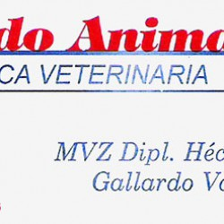 Clínica Veterinaria Mundo Animal img-0