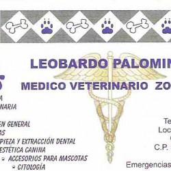 Clínica Veterinaria Puppys img-0