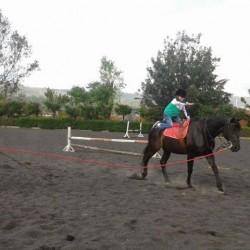 Club Hípico Tarasca img-5
