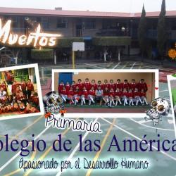 Colegio de las Américas img-3