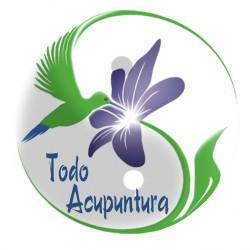 Homeopata y Acupunturista Ema Figueroa A.C. 6995/11 img-1