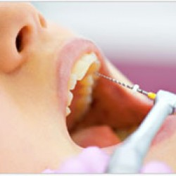 Servicios Odontológicos Express img-9