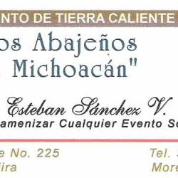 Conjunto de Tierra Caliente Los Abajeños de Michoacán img-0
