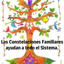 Constelaciones Familiares y Psicoterapia img-6