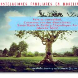 Constelaciones Familiares y Psicoterapia img-2