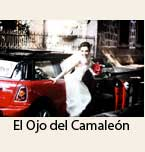 Logo de El Ojo del Camaleón Fotografía y Video Profesional