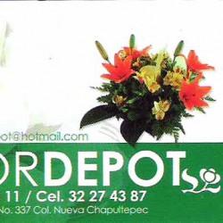 Flor Depot img-0