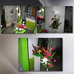 Florería Gudiño img-0
