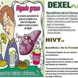 Herbax img-16