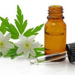 Homeopata y Acupunturista Ema Figueroa A.C. 6995/11 img-2