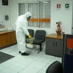 Exter Fumigaciones Morelia img-8