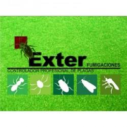 Exter Fumigaciones Morelia img-2