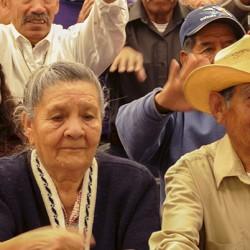 INAPAM Instituto Nacional de las Personas Adultas Mayores img-3