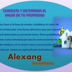Inmobiliaria Alexang img-5