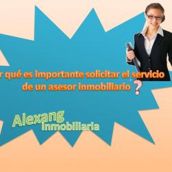 Inmobiliaria Alexang img-4