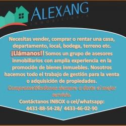 Inmobiliaria Alexang img-1