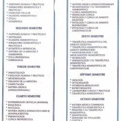 Instituto Michoacano de Homeopatía img-0
