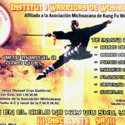 Instituto Warriors de Wushu Morelia img-0