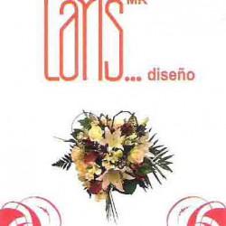 Laris Diseño img-0