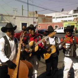 Los Sinceros de Michoacán img-0